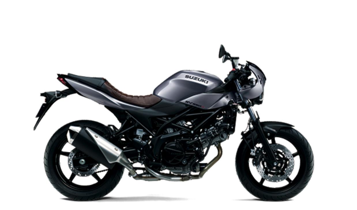 SUZUKI SV650 2019    -「Webike摩托車市」